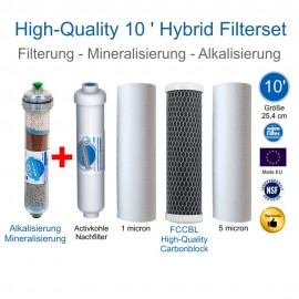 High Quality Hybrid Filterset 10'